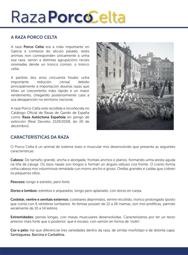 Folleto Cocido Sarria 2019