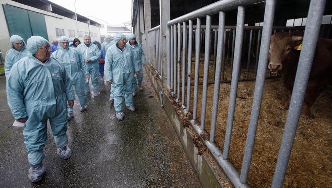 Douscentos gandeiros de Africor Coruña fórmanse en Xenética Fontao en reprodución bovina