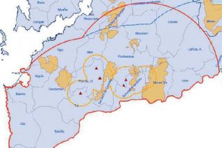 Sete novos positivos de nematodo do piñeiro no sur de Pontevedra