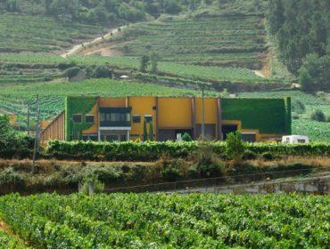 Grupo Reboreda Morgadío defende que cumpre a lexislacion de etiquetaxe de viños