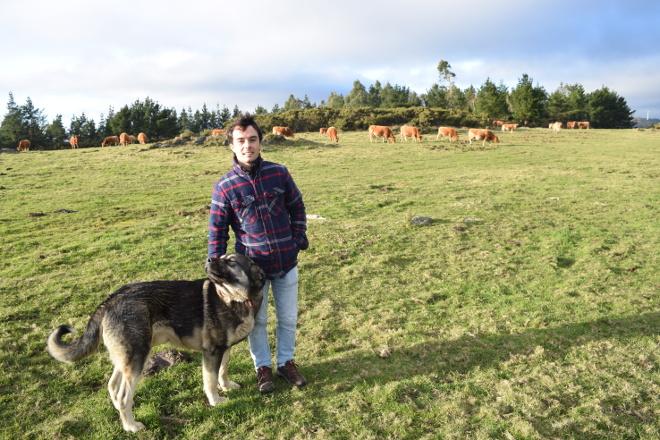 Ganadería O Bañal: De 15 a 0 ataques del lobo al ganado gracias a los mastines