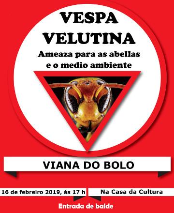 Charla este sábado en Viana do Bolo sobre a Vespa Velutina