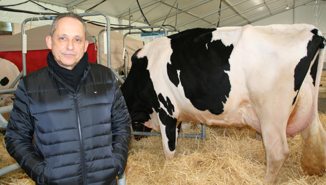 """""""É practicamente imposible en España que chegue ao mercado un leite con restos de antibióticos"""""""
