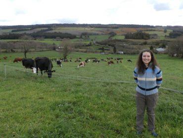 """""""En ecolóxico a Frisoa rústica é máis eficiente producindo leite se é para venda directa"""""""