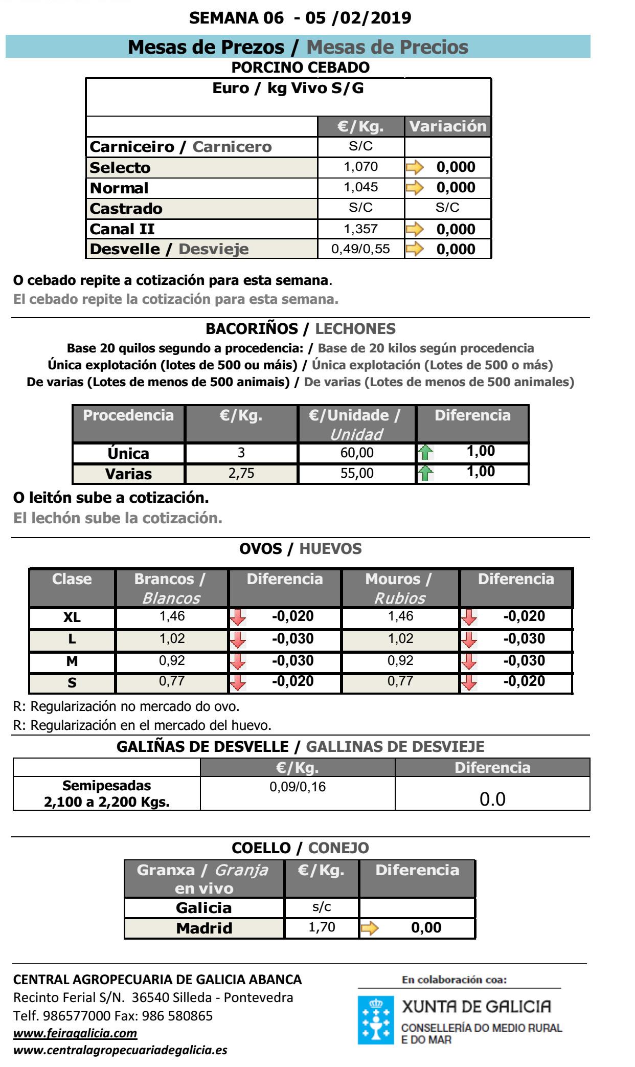 SILLEDA_19_2_1_PORCINO