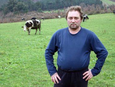 Vacas contra chalés, o caso da Sionlla