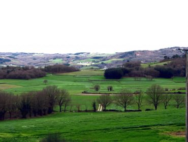 (I) A onde foron parar máis de 150.000 hectáreas de terras produtivas en Galicia nas últimas décadas?