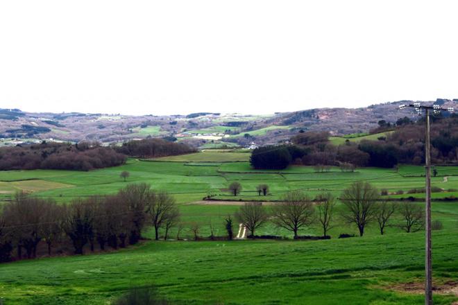 Vista desde a explotación da parroquia de San Vicente, afectada por un problema de minifundio