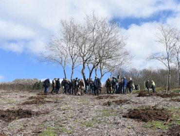 FSC organiza un programa de visitas y actividades sobre los montes certificados en Galicia