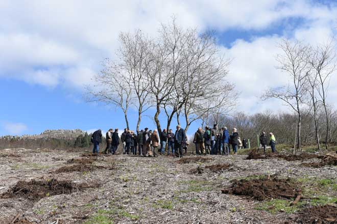 Curso sobre xestión forestal en Santiago