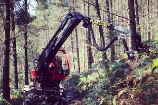 Hitraf, puntal da modernización tecnolóxica forestal