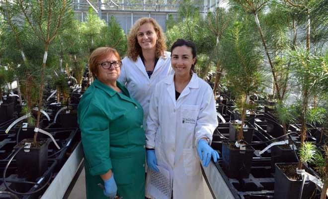 Raquel Diaz, en el centro, junto a la investigadora María Menéndez (derecha) y a Maribel, trabajadora del vivero del Centro.