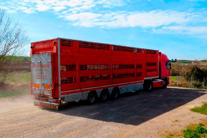 Curso sobre benestar animal no transporte en Ribadeo