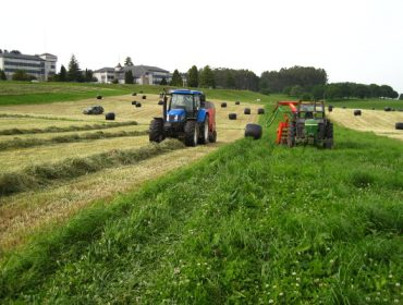 Claves para a ensilaxe da herba en rotopacas e a súa boa conservación