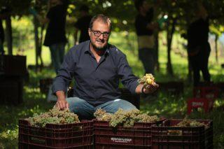 """""""El gran reto de Galicia es hacer ver a la sociedad que se puede vivir muy bien del campo"""""""