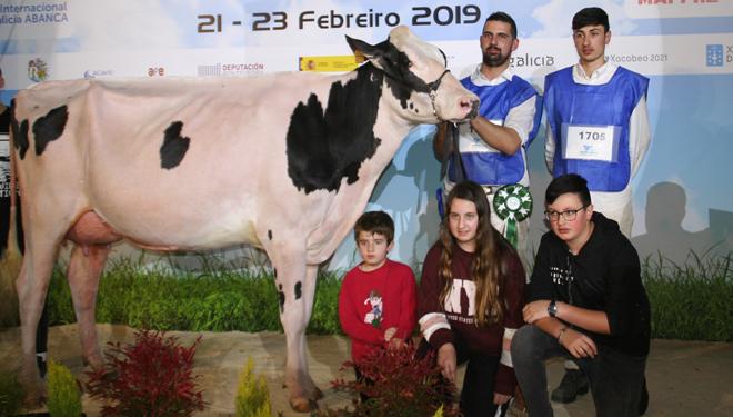 """""""Buscamos vacas para concursos e rendibles na granxa xa que, ó fin, vivimos do leite"""""""