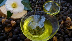 Aceite obtido das sementes das camelias.