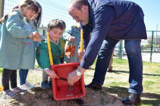 Unos 13.000 escolares lucenses plantan abedules en la Semana del Árbol y del agua