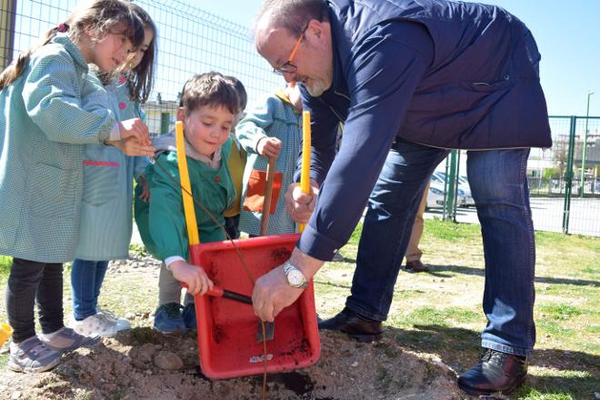Uns 13.000 escolares lucenses plantan bidueiros na Semana da Árbore e da Auga