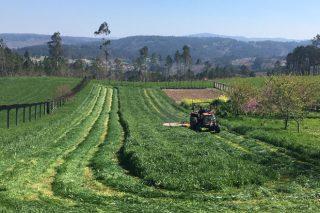 Imaxes do primeiro corte de herba deste ano en Galicia