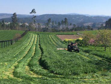 Imágenes del primer corte de hierba de este año en Galicia