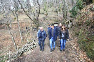 Medio Rural anuncia a próxima convocatoria da Mesa da Castaña