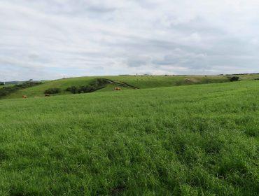 Claves prácticas da Lei de Recuperación da Terra Agraria