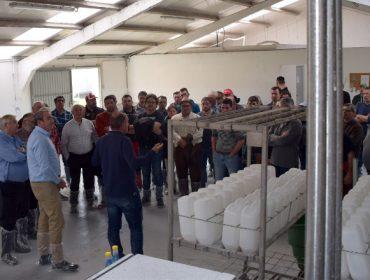 O Centro de Recría da Deputación de Lugo xa acolle 700 xatas de 50 gandeiros lucenses