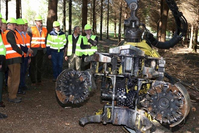 Cabezal de corte da procesadora forestal.