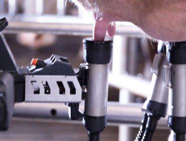 Así será o novo robot de muxido da Granxa Experimental de Vacún de Leite do Campus Terra
