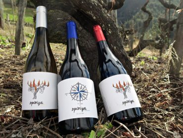Adega Sidrón, do viño a granel á aposta pola calidade no alto Navia