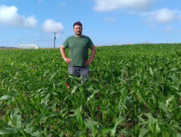 Vizura®: Más capacidad fertilizante del purín y menos impacto ambiental
