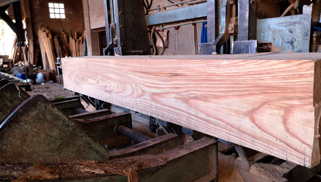 O aproveitamento da madeira de castiñeiro é máis limitado co doutras especies.