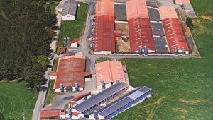 La granja cuenta con una doble cerca perimetral y dos acceso diferenciados para reducir el riesgo de contaminación.