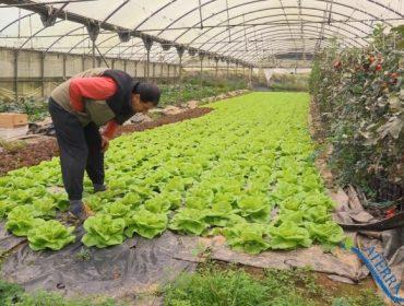 Aterra!, unha iniciativa para impulsar o emprendemento da mocidade no agro