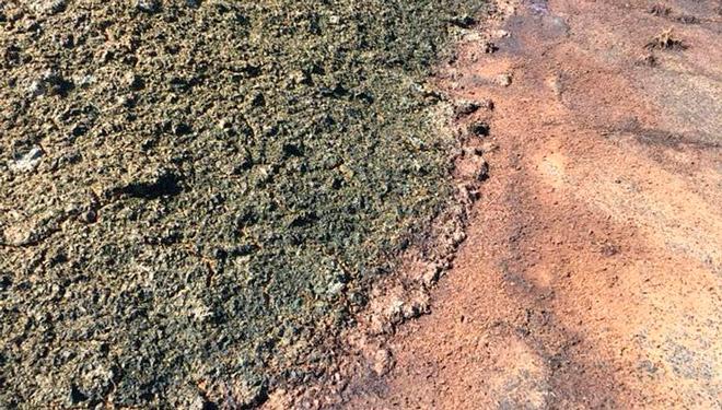 Abonar fincas con lodos de depuradora: riesgos y ventajas