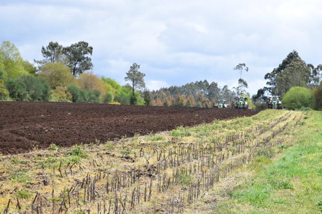 Prevese unha primavera máis cálida e seca do normal en Galicia