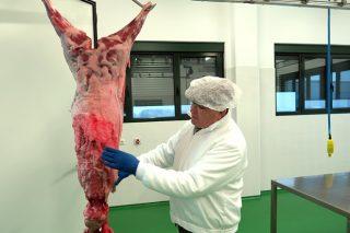 Así funciona la única sala de despiece de caza que hay en Galicia