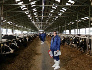 """""""Las granjas en Alemania invierten cada vez más en robots de ordeño o salas giratorias automatizadas"""""""