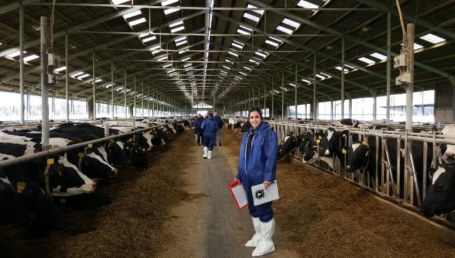 """""""As granxas en Alemaña invisten cada vez máis en robots de muxido ou salas xiratorias automatizadas"""""""