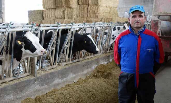 Antonio Gayoso, en su ganadería en Monterroso.