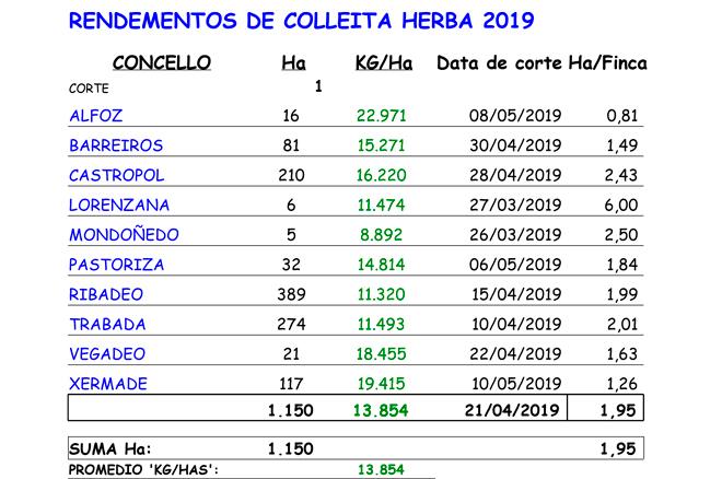 COLLEITADORAS-19-DATOS-RENDEMENTO-1-CORTE-