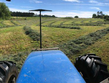 Campaña de ensilado de herba 2019:  Boa en calidades e rendementos