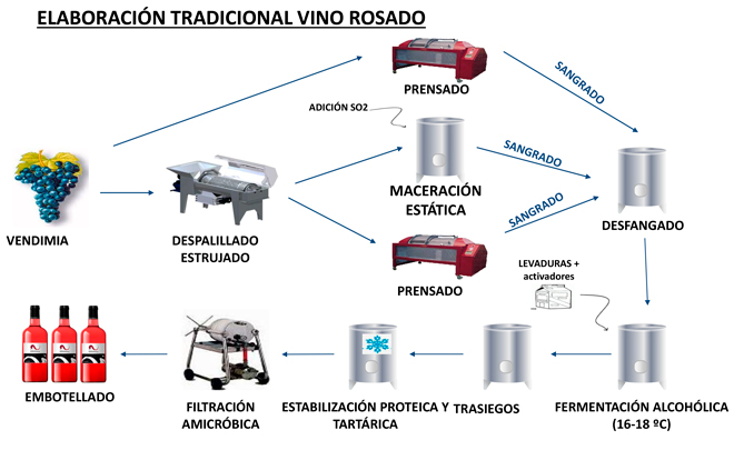 Elaboracion-lo vine-Rosado-DEL-Navarra-
