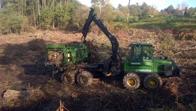 Greenalia considera que a súa planta de biomasa mellorará as rendas dos propietarios forestais ata un 10%