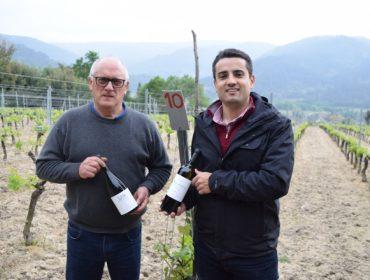 Adega Mauro Estévez: Viños exclusivos dende Arnoia para o mundo