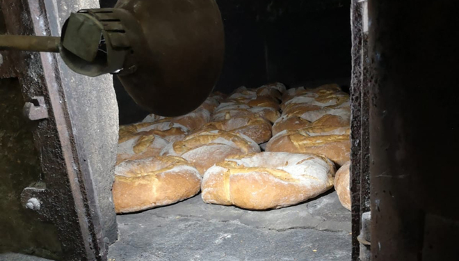 Tahona-Melide-pan panaderia