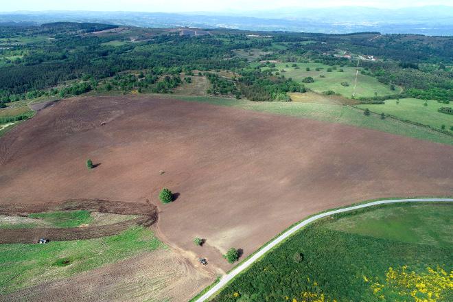 Coren planta as súas primeiras 50 hectáreas de cereal ecolóxico