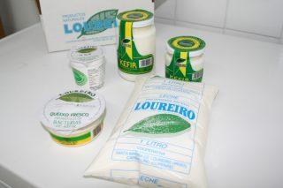 Loureiro, a última cooperativa leiteira que queda en Ourense