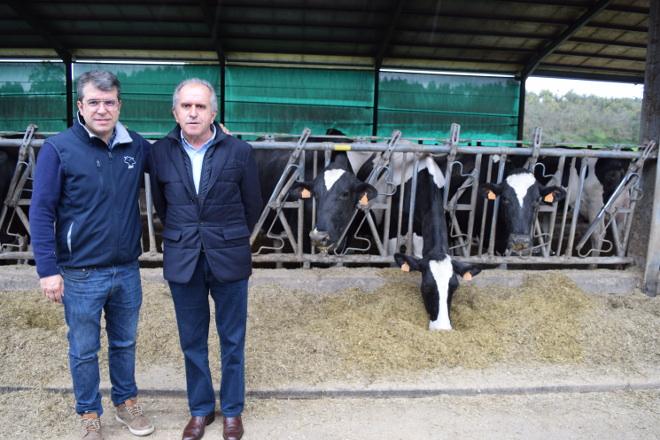 Badiola Holstein: A gandaría de vacún de leite máis premiada de España